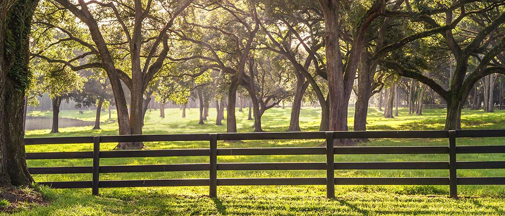 Какие способы аренды земли у администрации существуют? Что нужно, чтобы арендовать муниципальный участок через аукцион? Как получить землю в аренду без торгов? Расскажут наши опытные юристы
